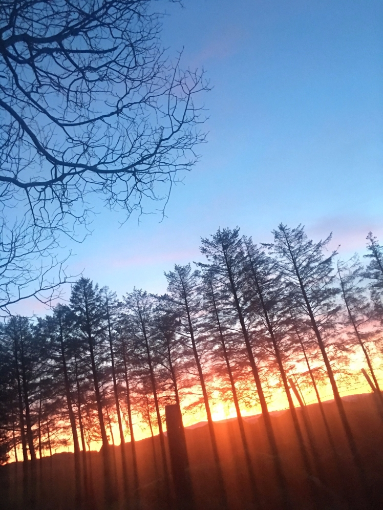 sunset-creggan-home.jpg